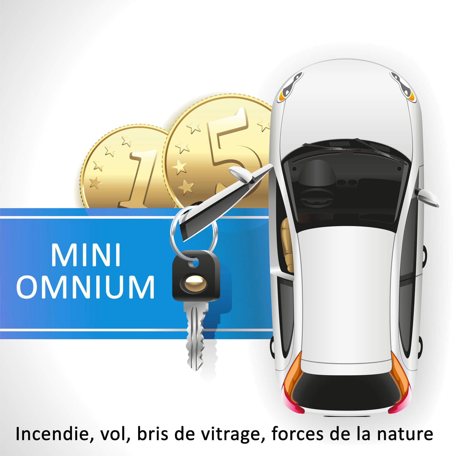 Mini Omnium ou partielle pour une voiture entre 2 et 6 ans